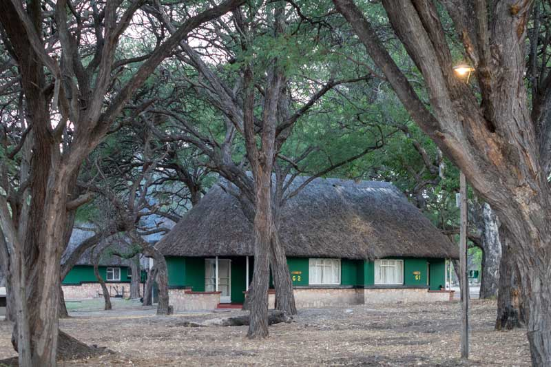 Hwange Nationalpark Main Camp - Bungalows